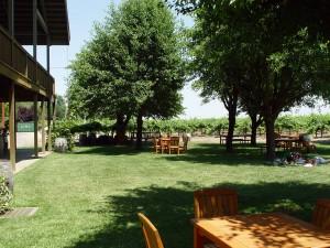 bogle picnic area